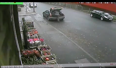 Thieves steal Christmas tree